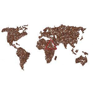 Where coffee originated