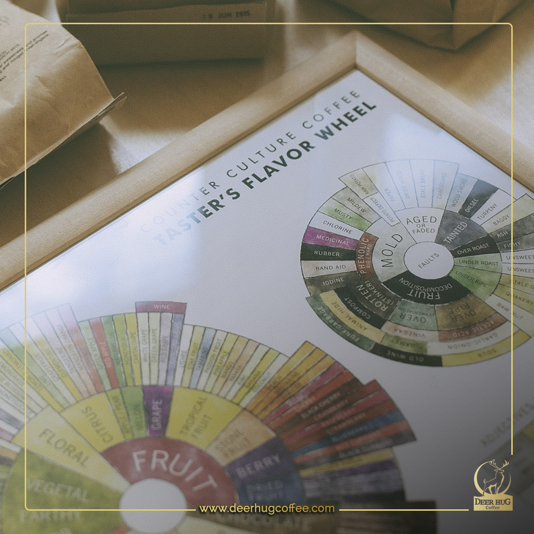 Coffee flavor: The wheel of flavors and aromas