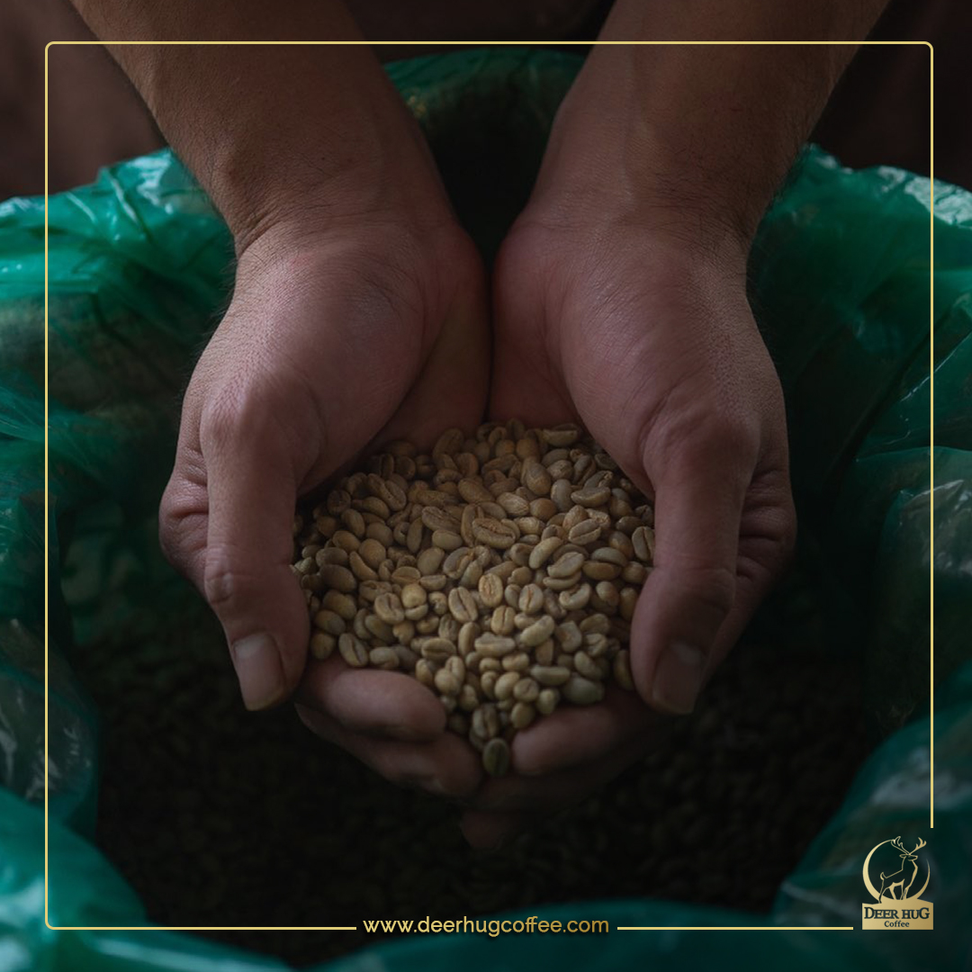 How to determine the quality of the coffee bean?